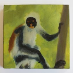 '20mg (Red Colobus)' by Conor Kelly