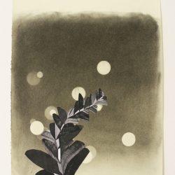'Untitled' by Kari Stewart