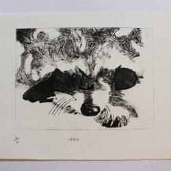 'Oreo' by Morag McGilchrist