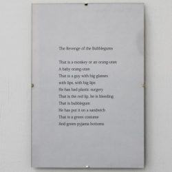 'The Revenge of the Bubblegums' by Rehan Yusuf