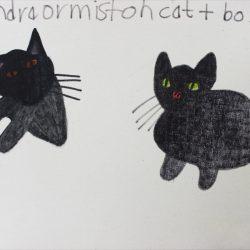 'Cats' by Sandra Ormiston