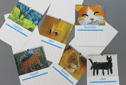 Shop Item of the Week – 2017 Cat Calendar