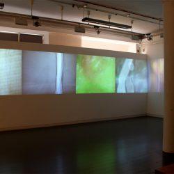 installation shot: Rainoir Clark, Lea Cummings, Alexander Storey Gordon, Simon McAuley, Celine Mcilmunn and George Williamson