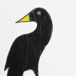 Black Yellow Bird