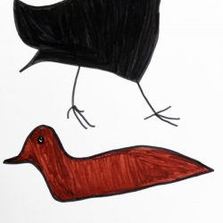 Bird and Duck