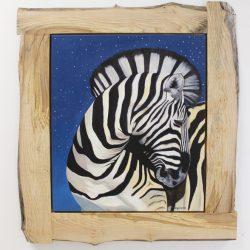 Star-lit Zebra